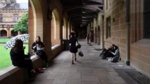 澳媒爆部分中国留学中介造假始末