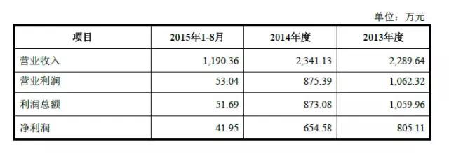 杭州夏恩利润表主要数据